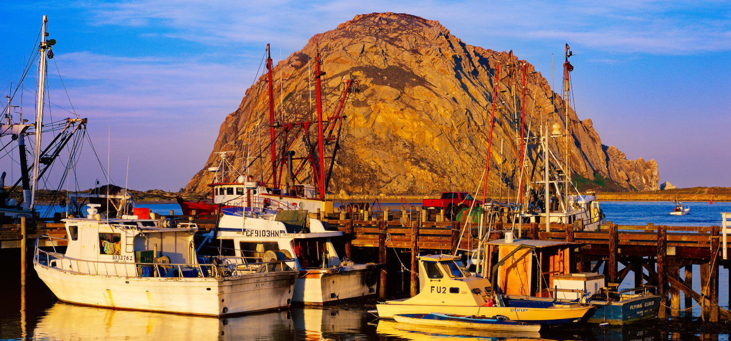 LET US CRAFT YOUR IDEAL BEACH ESCAPE IN MORRO BAY, CA